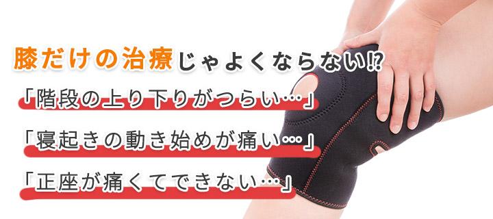 膝関節損傷画像1